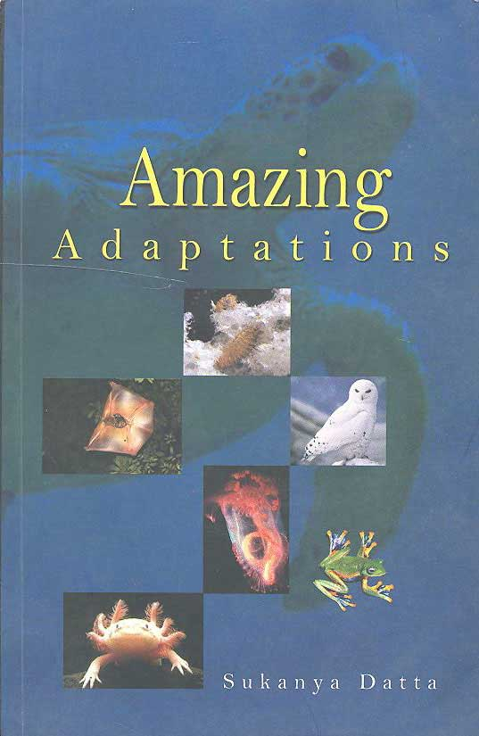 Amazing Adaptations