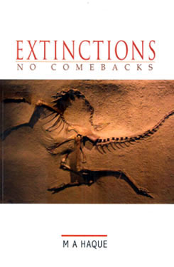 EXTINCTIONS: NO COMEBACKS